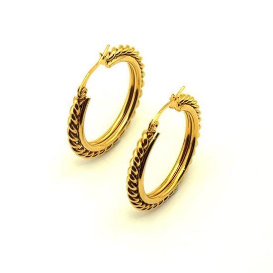 Picture of Hoop IP Plating Earrings Stainless Steel