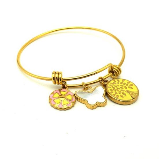 Picture of Charms Bracelet Stainless Steel IP Plating
