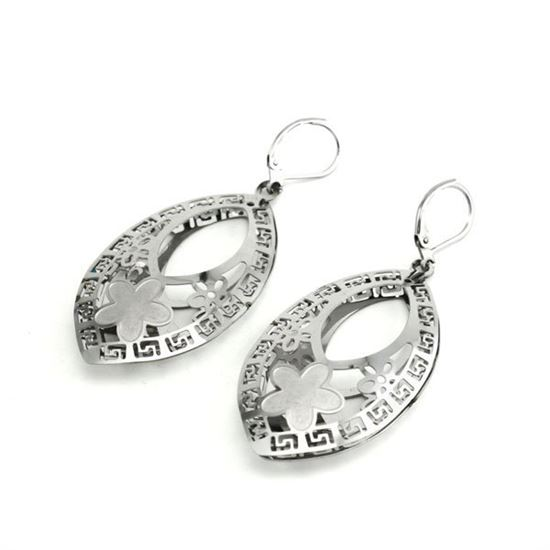 Picture of Raindrop Earrings Stainless Steel Polished