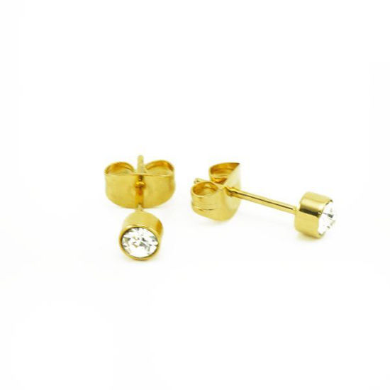 Picture of Stud Crystal Earrings Stainless Steel