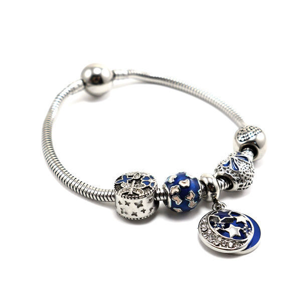 Picture of Charms Bracelet Stainless Steel