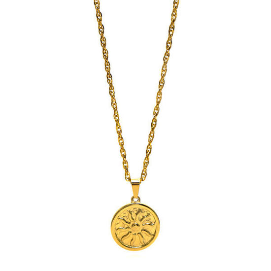 Picture of Medallion Necklace Stainless Steel Gold Plating