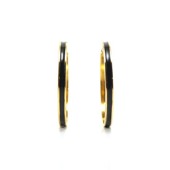 Picture of Enamel Hoop Earrings  Stainless Steel